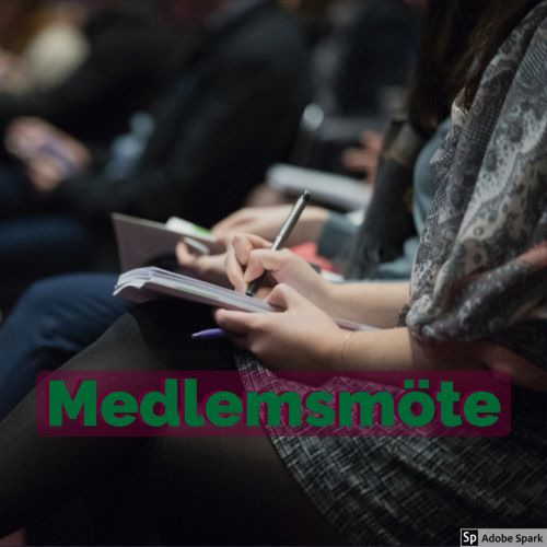 Medlemmar i en förening sitter på rad med anteckningsblock och pennor. De verkar lyssna på ett spännande föredrag. Texten Medlemsmöte ligger i förgrunden.