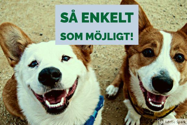 """Två leende hundar tittar upp i kameran. Det är två corigie-hundar och texten """"Så enkelt som möjligt!"""" står ovanför dem. Tjänsten ska underlätta för dig när din hund behöver bli vaccinerad."""
