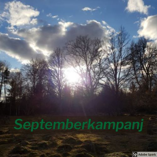 En hage där solens strålar går mellan träden i bakgrunden. Texten Septemberkampanj står i förgrunden. Vad ser du fram emot i september?