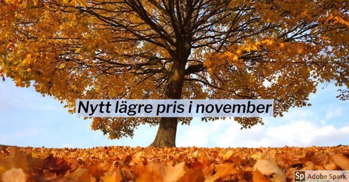 Höstlöv på ett träd och med många orange höstlöv på marken under. Texten Nytt lägre pris i november.