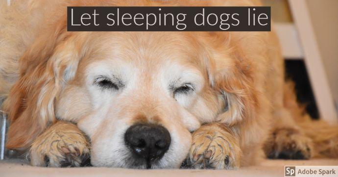 """En sovande äldre hund av golden retrievertyp med texten """"Let sleeping dogs lie"""". Texten handlar om att förbättrad sömn är välgörande för en hund med kronisk smärta pga artros."""